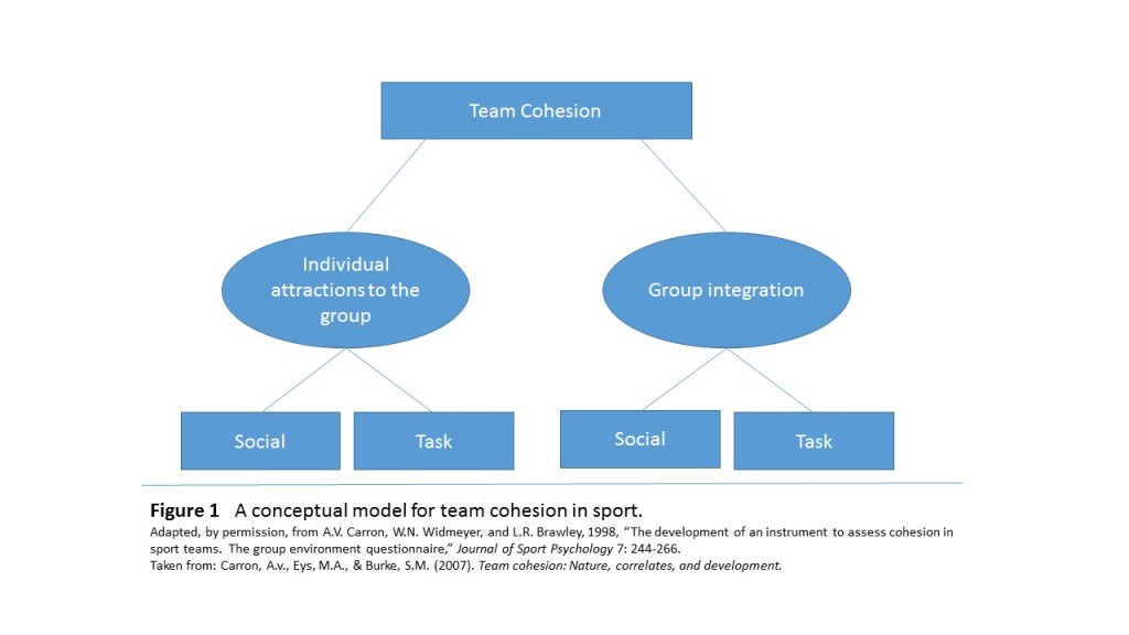 group cohesiveness essay In this essay, i do not intend to  the effects of initial structure and group member's willingness to disclose on actual self-disclosure and group cohesiveness.