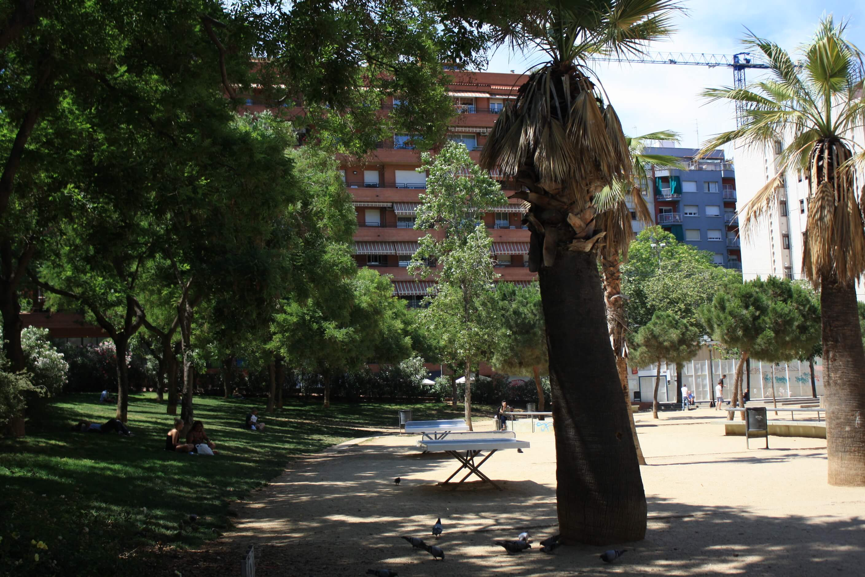 Siesta Time at the Park