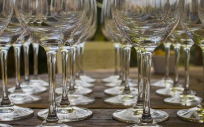 Wine and Olive Excursion: The First of Many Firsts to Come